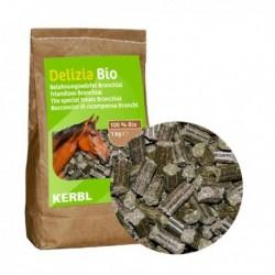 Pamlsek pro koně DELIZIA BIO KLASIK, 1 kg