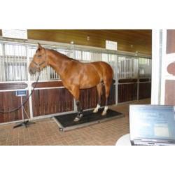 Váha na koně BOSCHE PW1500, do 1500 kg