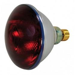 Infražárovka Interheat PAR 100 W, červená