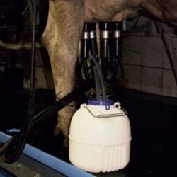 Separátor mléka Gewa, oddojovač čtvrtí, 12 l