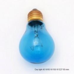 Žárovka terarijní 60 W, E27, day/denní světlo